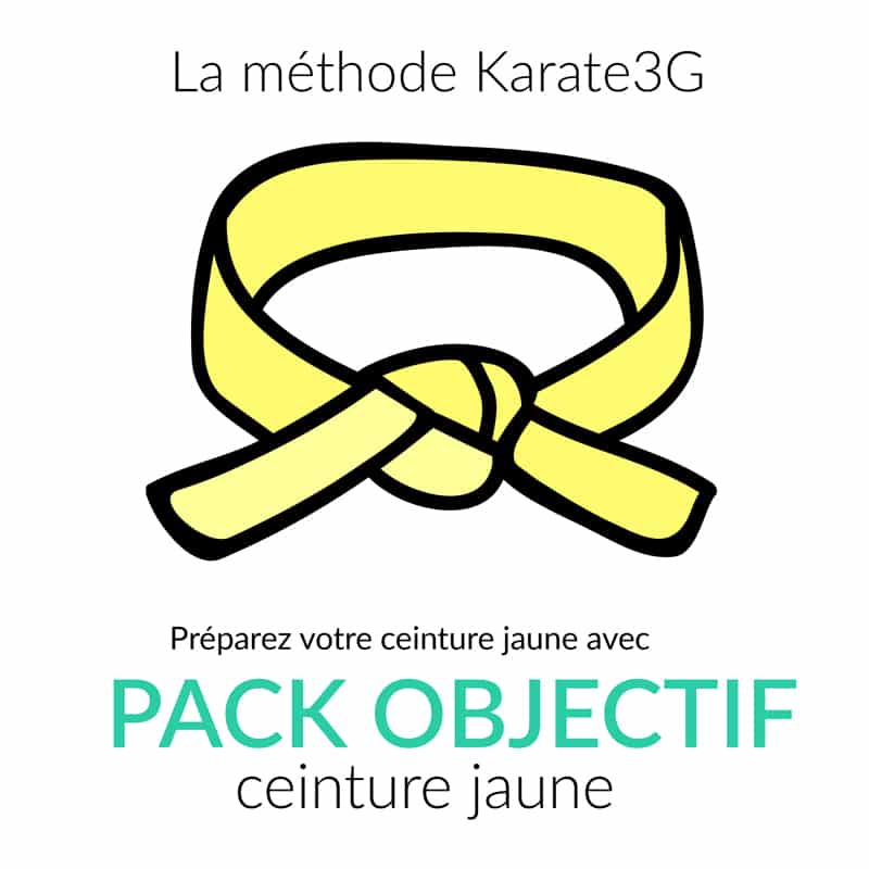5541a18c80c7 Pack objectif Karate3G ceinture jaune de Karate   Karate3G