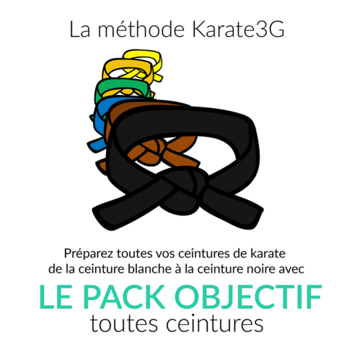 ceintures-blanche-a-noire-karate3G