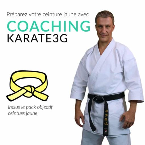 ceintures-jaune-karate3G-coaching