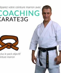 belts-brown karate3G-coaching