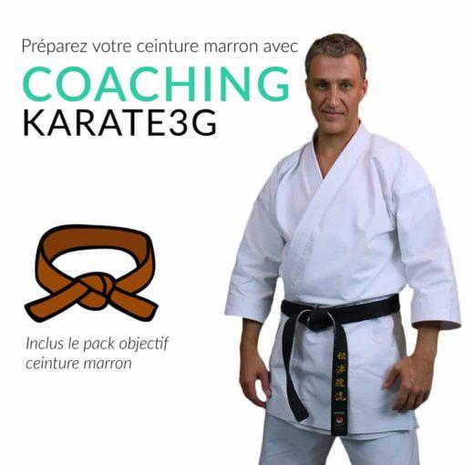 belts-brown karate3G-coaching