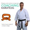 Coaching Karate3G vers la Ceinture Orange