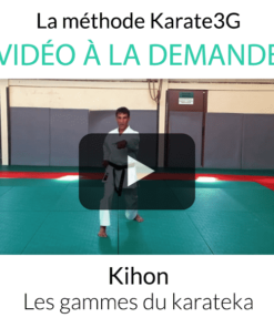 Kihon the ranges of karateka