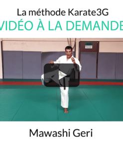 mawashi-geri-vod